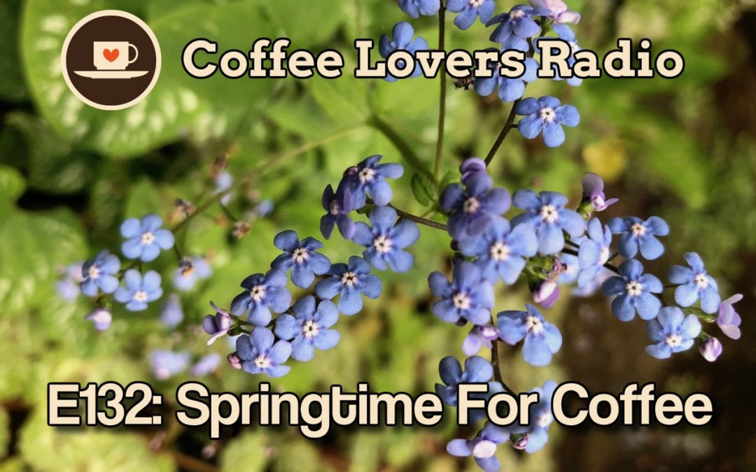 CLR-E132: Springtime For Coffee